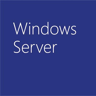 MICROSOFT WIN SERVER CAL 2019 SNGL OLP 1LICENSE NOLEVEL USRCAL